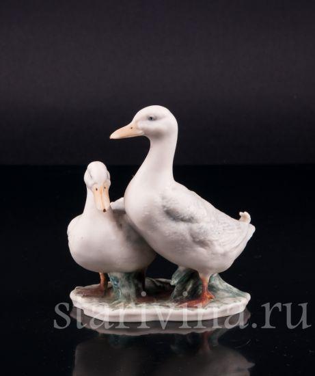 Изображение Пара белых уток, Kaiser, Германия, до 1990 года
