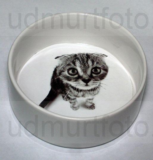 Печать на миске для животных
