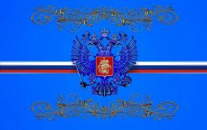 ОБЛОЖКА ДЛЯ ИНН СИНИЙ ФЛАГ 011.015