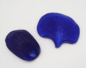 "`Молд для фоамирана ""Цветок фаленопсиса, двойной, M"", белый пластик, размер 55х45, 45х30 мм"