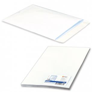 Конверт-пакет плоский , КОМПЛЕКТ 25шт, 229х324мм, отрывная полоса, белый, на 90л, 124090.25