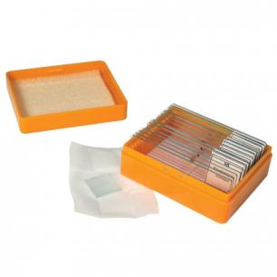 Набор готовых микропрепаратов LEVENHUK N10 NG (10 образцов, стекла), 29279