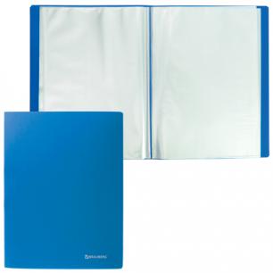 Папка 20 вклад. BRAUBERG Бюджет, синяя, 0,5мм, 222628