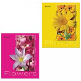 Тетрадь 48л. BRAUBERG кл., обл. мел. карт., Цветы (4 вида), 401283