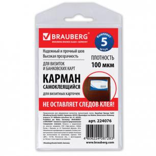Карманы самоклеящиеся BRAUBERG, КОМПЛЕКТ 5шт, 65*98мм, для визитных карточек, 224076