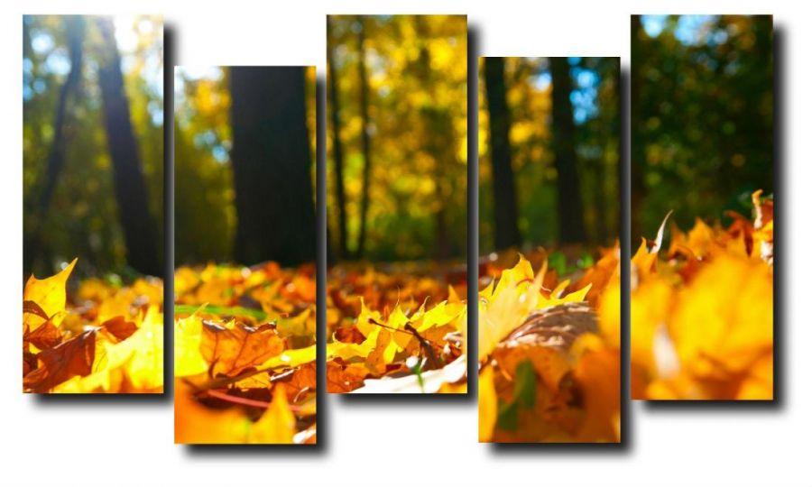 Модульная картина Природа. Опавшая листва