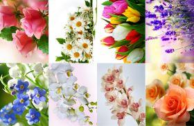 Водорастворимая бумага с рисунком Цветы фото 216х139мм