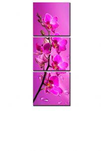 ветка орхидеи (размер S)