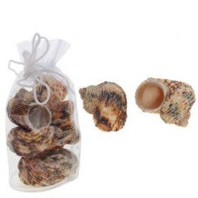 Декор Набор ракушек, 12 см натуральные материалы (арт. 7691157) (13338)