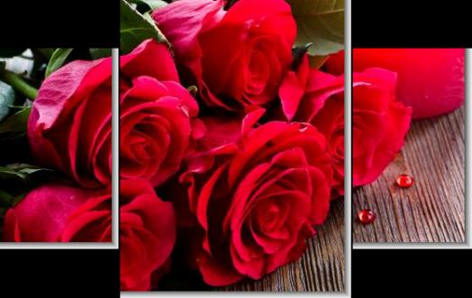Модульная картина Красные розы