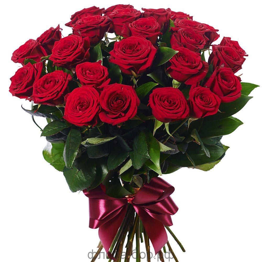 Розы 25 шт.