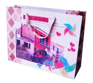 Набор Пакетов бумажных Дом (10 шт)