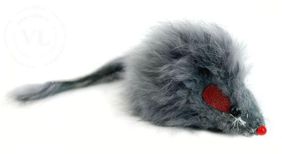 мышка пушистая