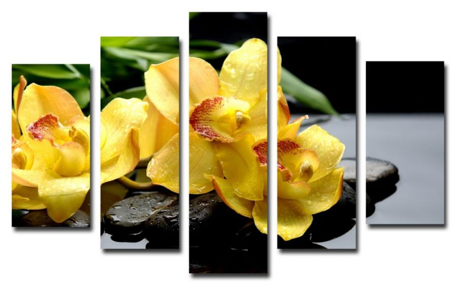 Модульная картина Желтые орхидеи на камнях