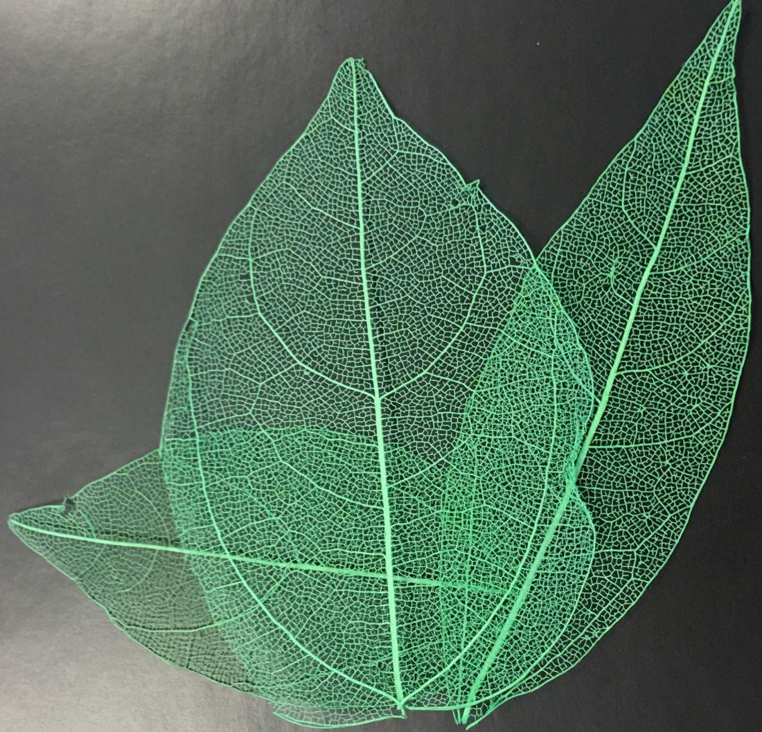 лист-паутинка цветной декоративный