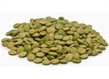 Чечевица зеленая Россия от 1 кг