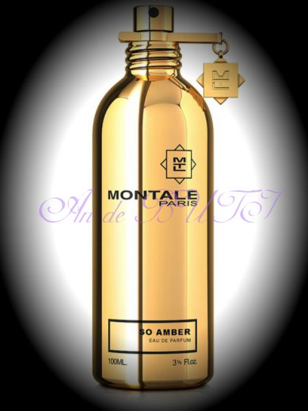 Montale So Amber 100 ml edp