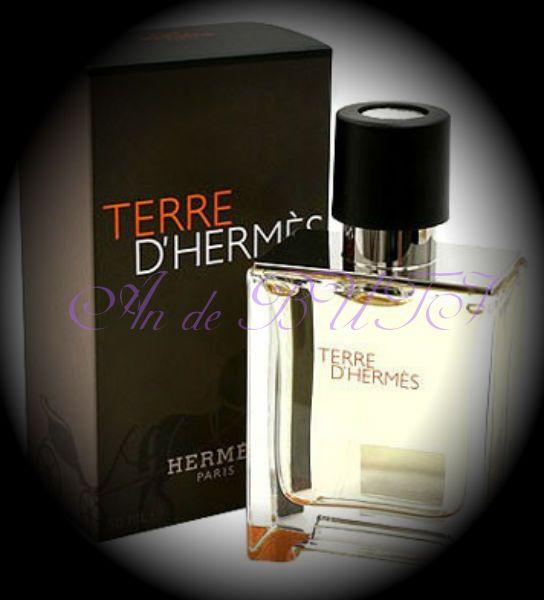 Hermes Terre d'Hermes 100 ml edt