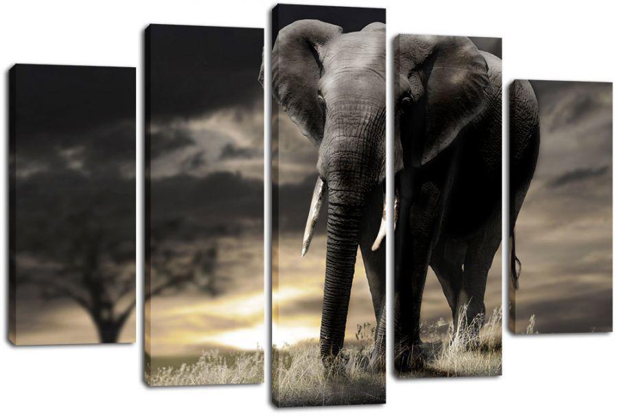 Модульная картина Слон