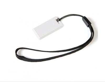 16GB USB-флэш корпус для флешки UsbSouvenir US220, белая