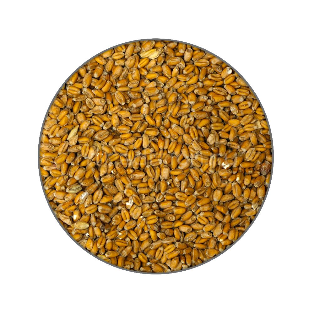 Пшеничный солод Wheat malt MD (Хит молт), Бельгия, 1 кг, ( не молотый)