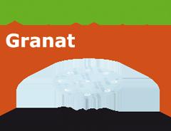 Шлифовальные круги STF D125/90 P1000 GR/50