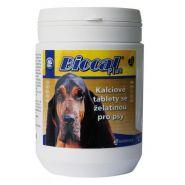 Canvit Biocal Plus Кальциевые таблетки с желатином для собак (500 шт.)