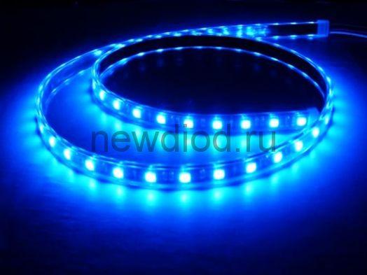 СД лента 14.4вт SMD5050-60LED 1000Lm 12V IP68 (синий) MS