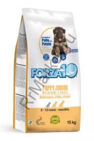 Forza10 (Форца10) Medium Maint. Pollo/pat. (для взрослых собак средних пород курица/карт.) 15кг
