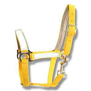 Недоуздок желтый со светоотражающими вставками