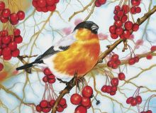Почтовая открытка Снегирь в ягодах