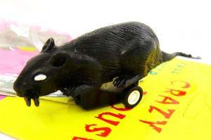 Мышь сумасшедшая