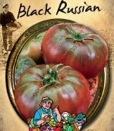 "Томат сорт ""БЛЭК РАШН"" (BLACK RUSSIAN) 40 семян"