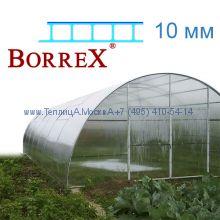 Теплица Фермер 5.6 х 42 с поликарбонатом 10 мм BorreX