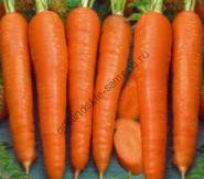 """Морковь сорт """"БЕРЛИКУМЕР"""" (BERLIKUMER)  6 гр."""