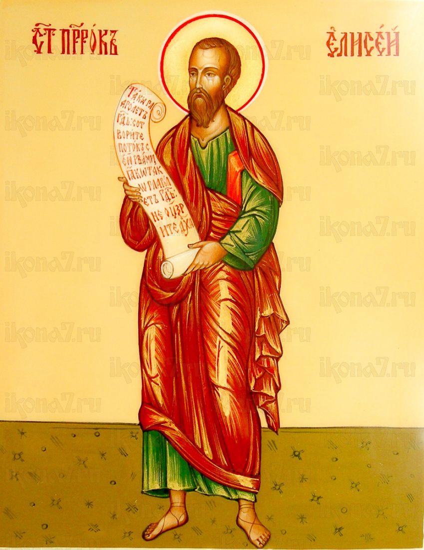 Елисей, пророк