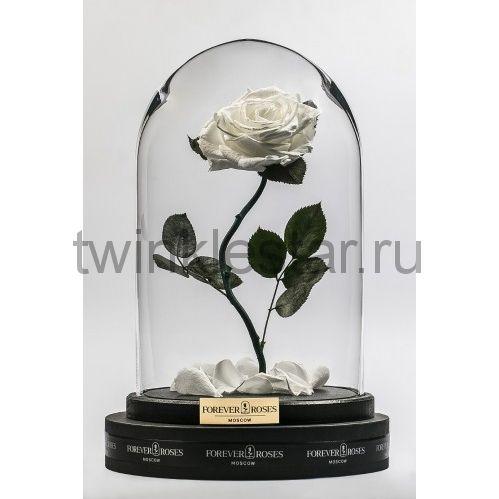 Роза в колбе (белый) на изогнутом стебле, 33 см