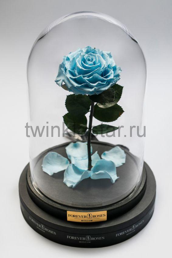 Роза в колбе (голубая) на прямом стебле, 33 см