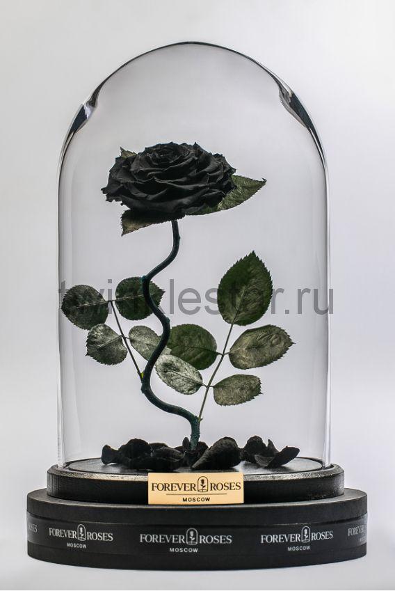 Роза в колбе (черная) на изогнутом стебле, 33 см