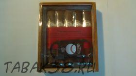 Подарочный набор Te Amo WS Robusto с гильотиной