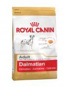 Далматин эдалт 12 кг