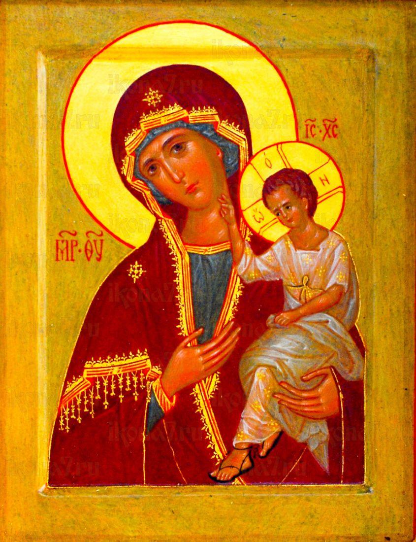 Воспитание икона Божией Матери
