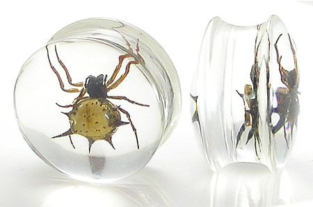 Плаги Акриловые - паук