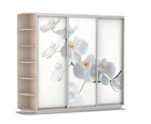 Шкаф купе Трио Орхидеи