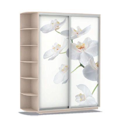 Шкаф купе Дуо Орхидеи