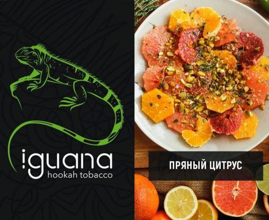 Табак для кальяна Iguana Пряный цитрус