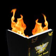 Огненная книга метаморфоз (18.5×27.5 см) (появление голубя из огня)