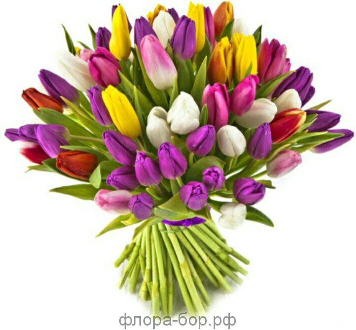 Букет из 21 тюльпанов