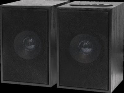 Акустическая 2.0 система SPK 260 10Вт, BT/FM/MP3/TF/USB, 220В