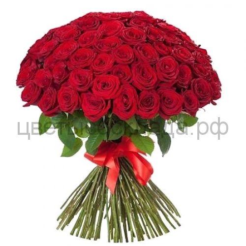101 красная роза России